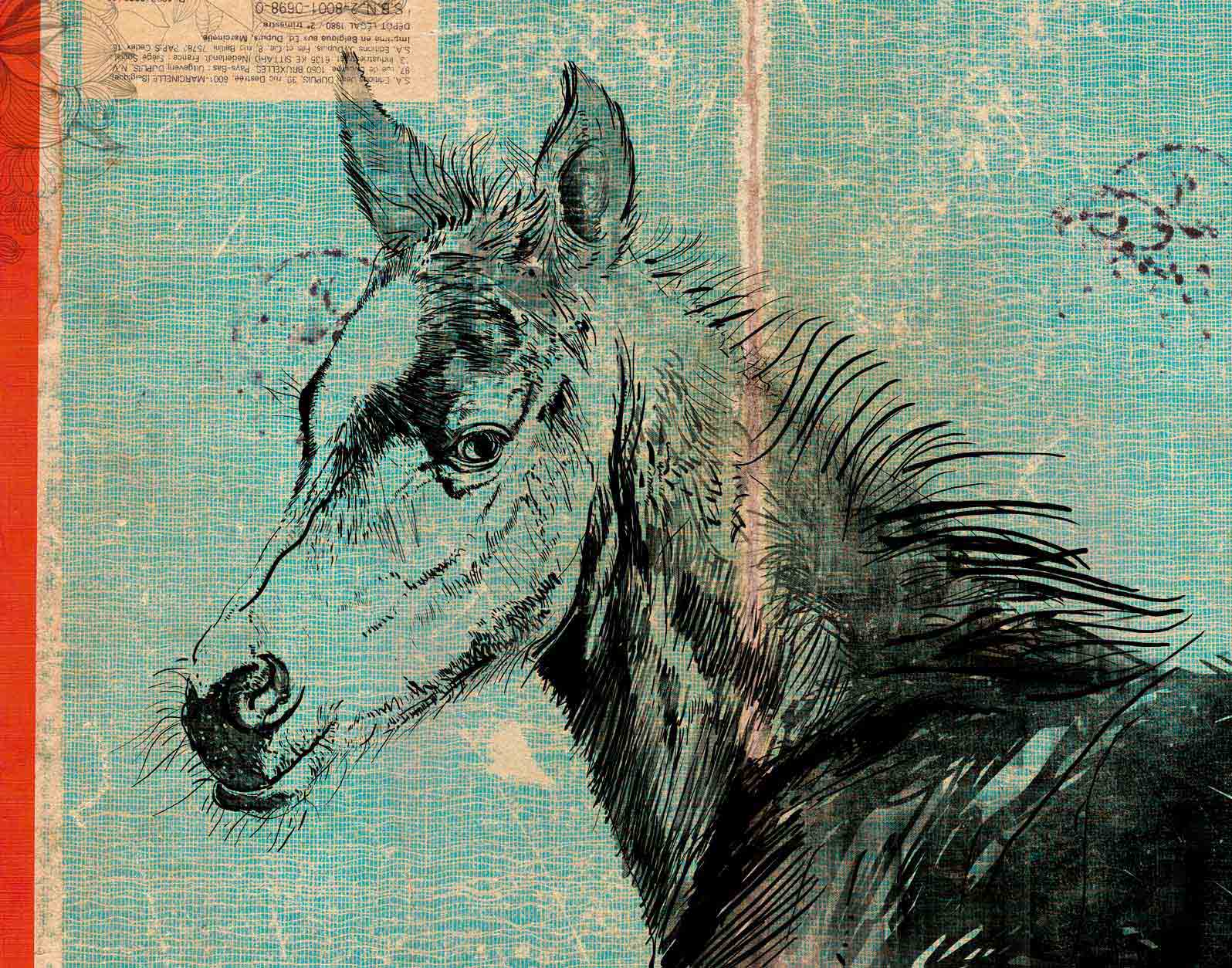 Anca Stefanescu | Contemporary Painter | The Foal, Digital Art
